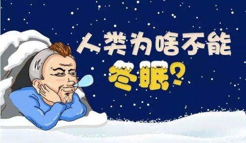 冬眠的动物似乎都是变温的,冬眠时减少运动,降低消耗,保持体能.