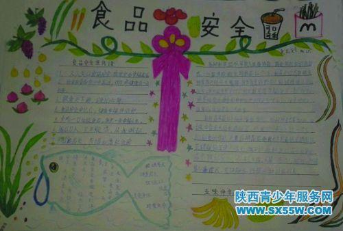 介绍了食物金字塔及食品安全_乐乐简笔画