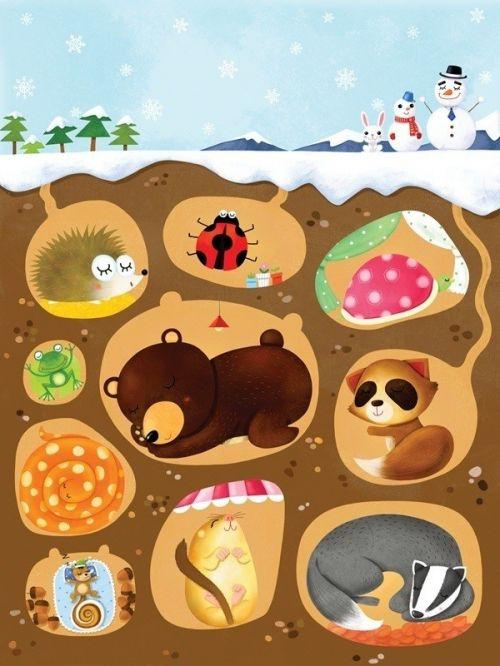 趣话动物冬眠
